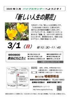 BS2020_03_A.jpg